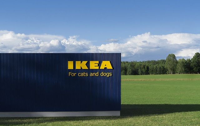 IKEA Unveils New Pet Furniture Collection Designed In Partnership - Ikea has launched its own pet furniture collection and its paw some