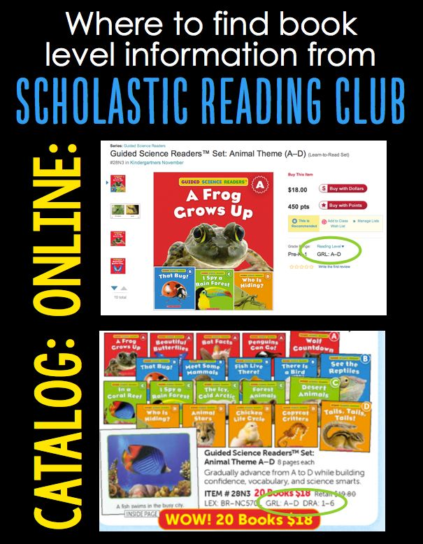 Every month, I host a kids' book club for the children in one of our local Moms Groups. As a homeschooling teacher, I have registered with Scholastic Reading Clubs and use this to help parents order their books. Recently, I have had several requests for help on how they too can start a kids' book club with their group.