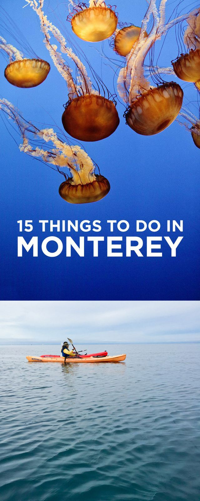 15 Things To Do In Monterey Ca Giveaway Local Adventurer