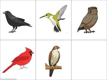 Bird trace and color printables 1111 bloglovin download your free trace color birds here fandeluxe Images