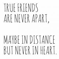 25 Beautiful Friendship Quotes Skip To My Lou Bloglovin