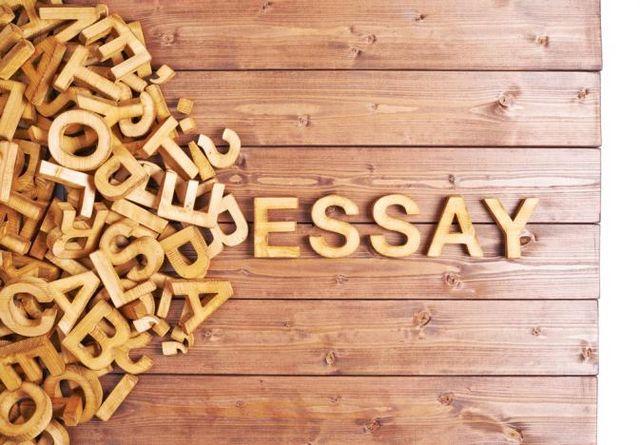 Need buy essay