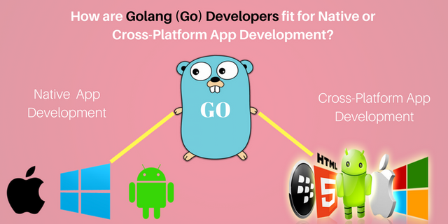 How are Golang (Go) Developers fit for Native or Cross-Platform App