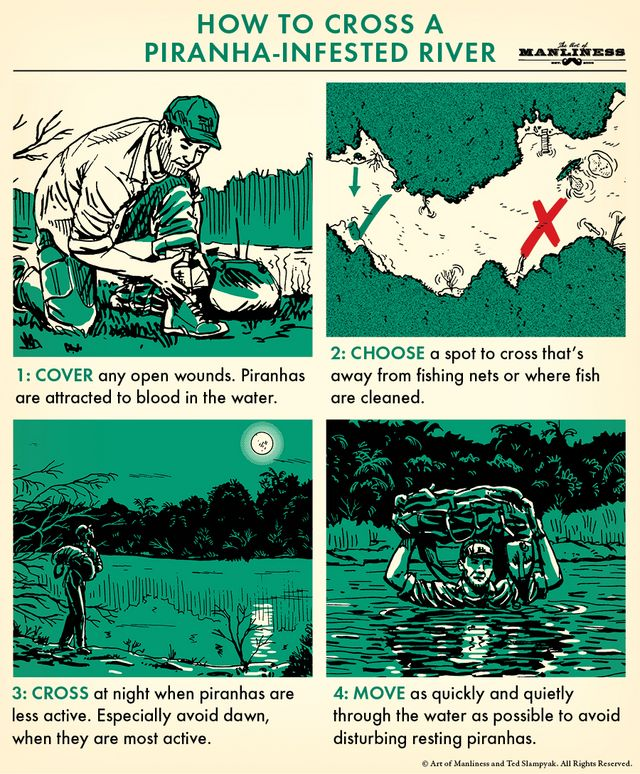 3879d24baac7 Here s the good news  piranhas very rarely attack humans unless said humans  are already injured or dead. Here s the bad news