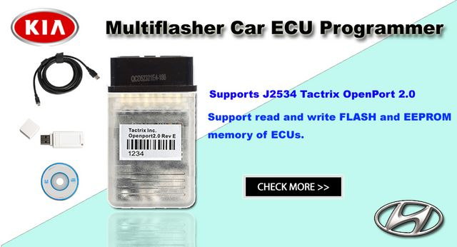 Kia Hyundia Multiflasher Multi Flasher Car ECU programmer